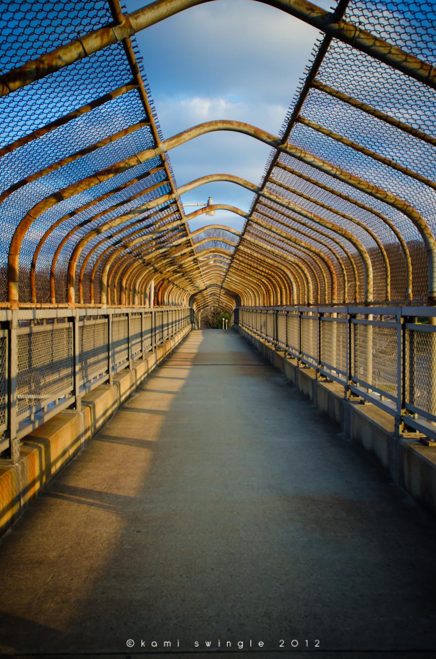 ©kamiswingle_footbridge_shirlington-1