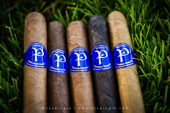 088-NKSwingle_Pucho-Cigars