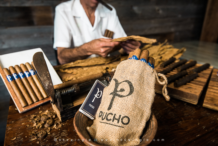 166-NKSwingle_Pucho-Cigars-2